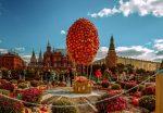 Куда пойти с девушкой осенью – Места для осенних свиданий в Москве